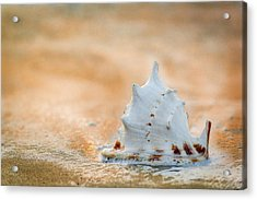 Acrylic Print featuring the photograph Washed Up by Sebastian Musial