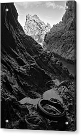 Washed-up Acrylic Print by Tim Haynes