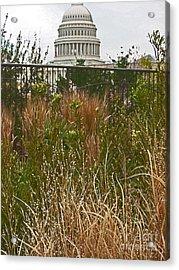 Washington Acrylic Print by Beebe  Barksdale-Bruner