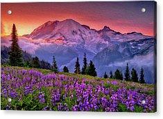 Washington, Mt Rainier National Park - 05 Acrylic Print