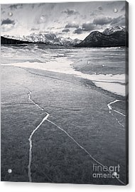 Watch Out For The Black Ice Acrylic Print by Royce Howland