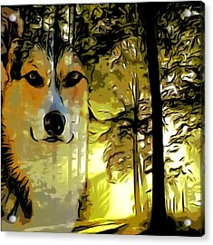 Acrylic Print featuring the digital art Watcher Of The Woods by Kathy Kelly