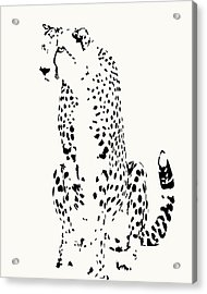 Watchful Cheetah On Its Haunches Acrylic Print
