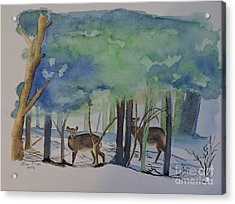 Watchful Acrylic Print by Lise PICHE