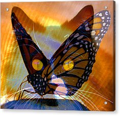 Acrylic Print featuring the photograph Watching Butterlies by David Lee Thompson