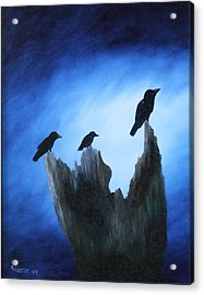 Watching For Company Acrylic Print by Rebecca  Fitchett