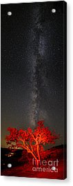 Watching In Awe As The Milky Way Rises Panorama - Enchanted Rock Fredericksburg Texas Hill Country Acrylic Print