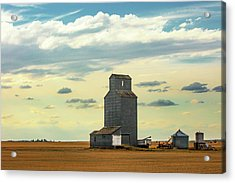 Watching O'er The Plains Acrylic Print