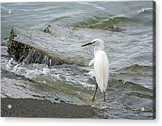 Watching The Tide Come In Acrylic Print