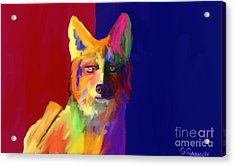 Watching Waiting Acrylic Print by GCannon