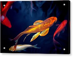 Water Ballet Acrylic Print