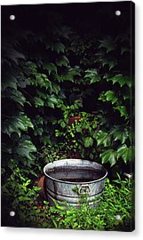 Acrylic Print featuring the photograph Water Bearer by Jessica Brawley