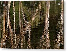 Water Bumps Acrylic Print by David Benson