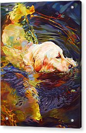 Water Dance 2 Acrylic Print by Kelly McNeil