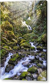 Water Dance Acrylic Print by James Heckt