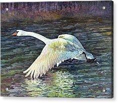 Water Dancer Acrylic Print by Hailey E Herrera