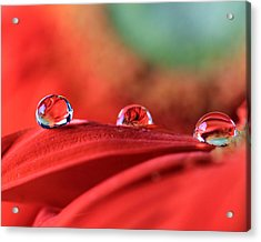 Water Drop Reflections Acrylic Print