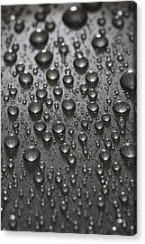 Water Drops Acrylic Print by Frank Tschakert