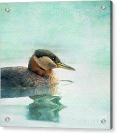 Water Fowl Acrylic Print