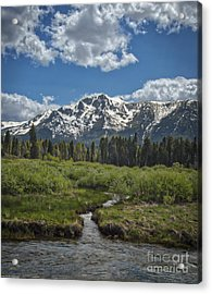 Water From The Mountain Acrylic Print