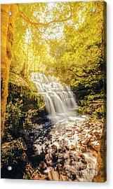 Water In Fall Acrylic Print