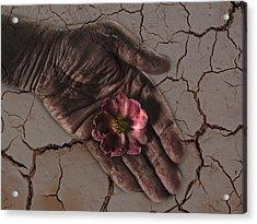 Water Is Life Acrylic Print by Joachim G Pinkawa