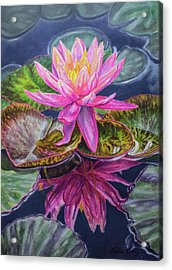 Water Lilies 17 Sunfire Acrylic Print