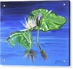Water Lilies In Blue Acrylic Print