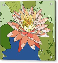 Water Lily And Duck Weed Acrylic Print