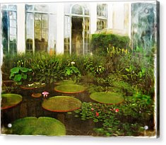 Water Lily Pond Acrylic Print