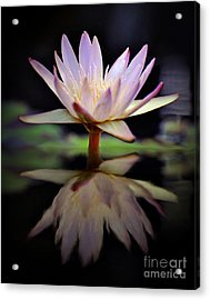 Acrylic Print featuring the photograph Water Lily by Savannah Gibbs