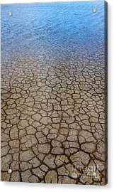 Water Over Drought Acrylic Print by Carlos Caetano