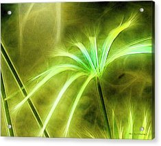 Water Plants Acrylic Print
