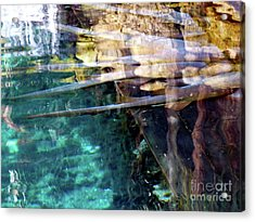 Acrylic Print featuring the photograph Water Reflections by Francesca Mackenney