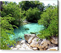 Acrylic Print featuring the photograph Water Shallows by Francesca Mackenney