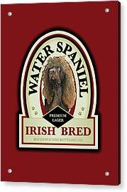 Water Spaniel Irish Bred Premium Lager Acrylic Print