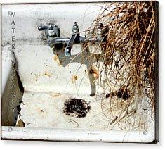 Water Vacancy  Acrylic Print by Steven Digman
