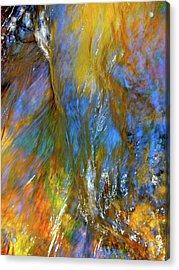 Water Wonder 164 Acrylic Print by George Ramos