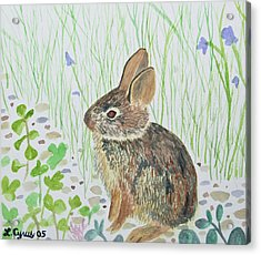 Acrylic Print featuring the painting Watercolor - Baby Bunny by Cascade Colors