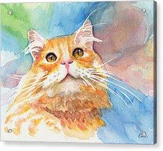 Watercolor Cat 05 Smile Cat Acrylic Print