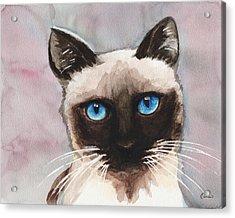 Watercolor Cat 06 Blue Eyes Cat Acrylic Print