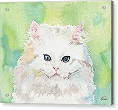Watercolor Cat 07 Princess Kitten Acrylic Print