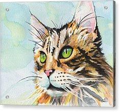 Watercolor Cat 08 Green Eyes Cat Acrylic Print