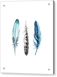 Acrylic Print featuring the digital art Watercolor Feathers by Jaime Friedman