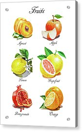 Watercolor Fruit Illustration Collection I Acrylic Print