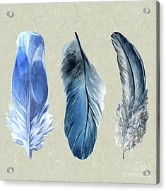 Watercolor Hand Painted Feathers Acrylic Print by Heinz G Mielke