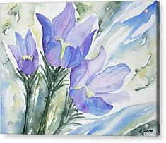 Acrylic Print featuring the painting Watercolor - Pasque Flowers by Cascade Colors