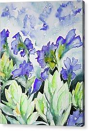 Watercolor - Rocky Mountain Wildflowers Acrylic Print