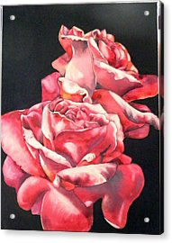 Watercolor Rose 2 Acrylic Print