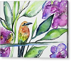 Acrylic Print featuring the painting Watercolor - Rufous Motmot by Cascade Colors